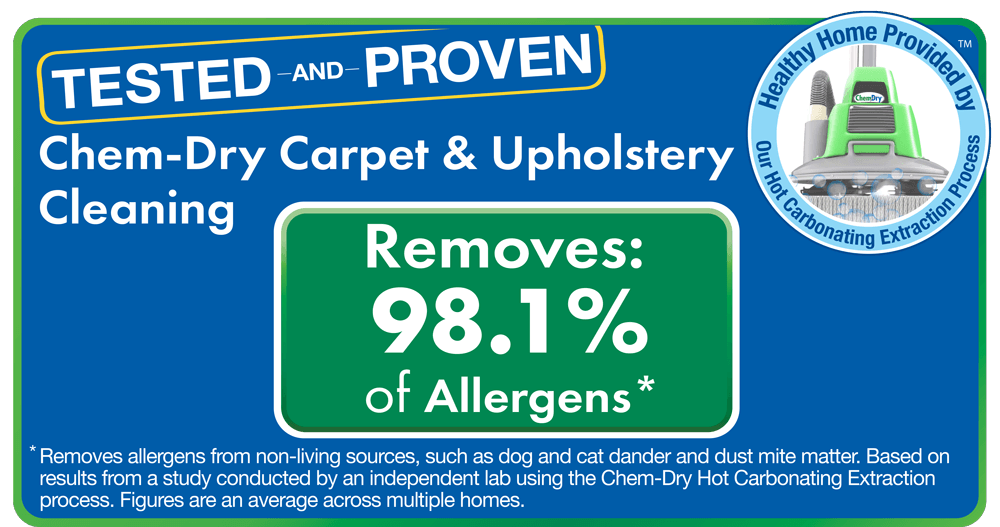 instant price quote area rug cleaning